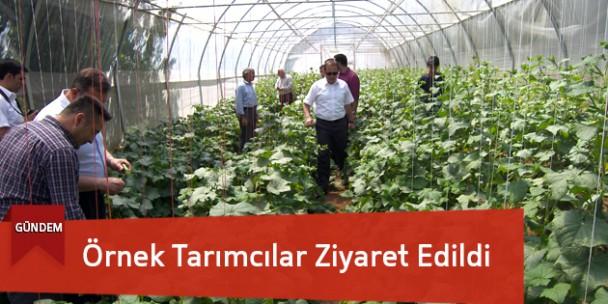 Örnek Tarımcılar Ziyaret Edildi