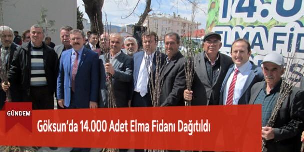 Göksun'da 14.000 Adet Elma Fidanı Dağıtıldı