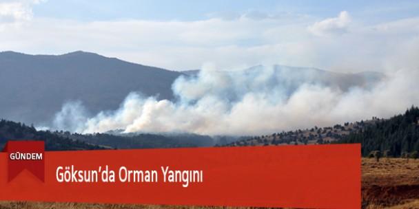 Göksun'da Orman Yangını