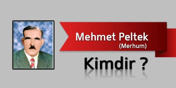 Mehmet Peltek Kimdir?