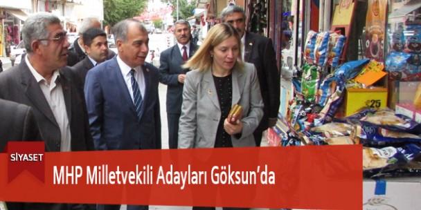 MHP Milletvekili Adayları Göksun'da