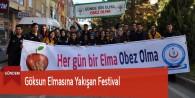Göksun Elmasına Yakışan Festival