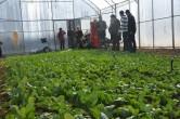 Organik Ürünler GMYO'dan – Foto Galeri