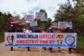 'Hareket Et Sağlıklı Kal' Yürüyüşü Düzenlendi – Foto Galeri