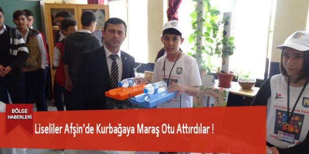 Liseliler Afşin'de Kurbağaya Maraş Otu Attırdılar !