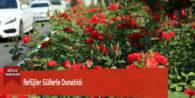 Refüjler Güllerle Donatıldı