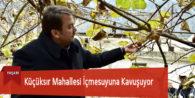 Başkan Erkoç'tan Naranciye Bahçelerinde İnceleme