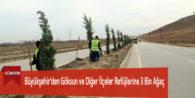 Büyükşehir'den Göksun ve Diğer İlçeler Refüjlerine 3 Bin Ağaç