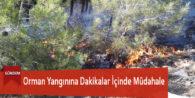 Orman Yangınına Dakikalar İçinde Müdahale