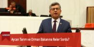 Aycan Tarım ve Orman Bakanına Neler Sordu?