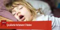 Çocuklarda Horlamanın 5 Nedeni