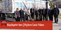 Büyükşehir'den Çiftçilere Ceviz Fidanı